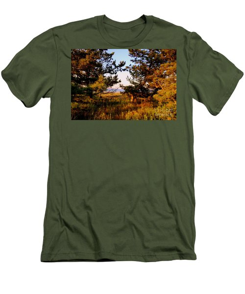 Through The Pine Grove Men's T-Shirt (Athletic Fit)