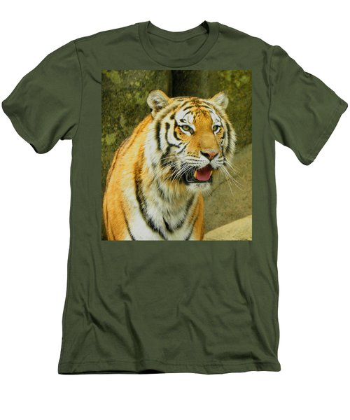 Men's T-Shirt (Slim Fit) featuring the photograph Tiger Stare by Sandi OReilly