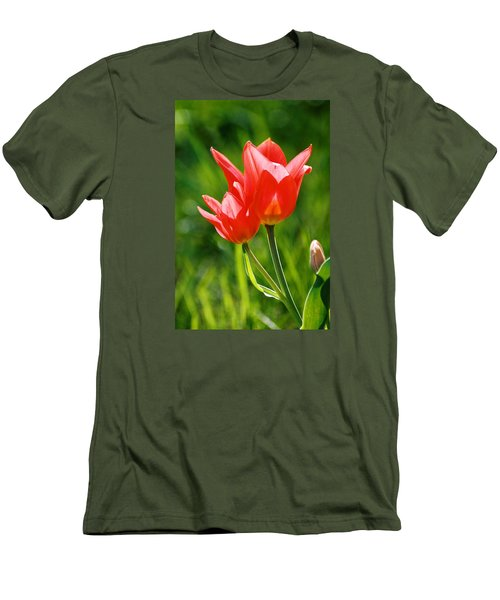 Toronto Tulip Men's T-Shirt (Slim Fit)