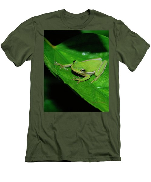 Tree Frog On Hibiscus Leaf Men's T-Shirt (Slim Fit) by DigiArt Diaries by Vicky B Fuller