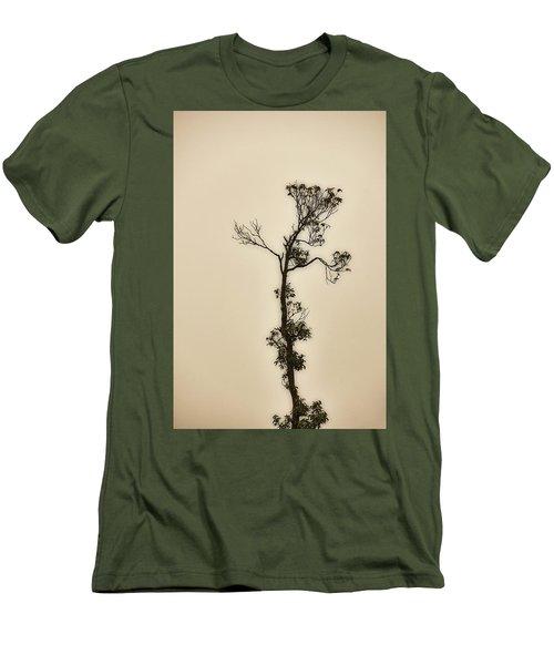 Tree In The Mist Men's T-Shirt (Slim Fit) by Rajiv Chopra