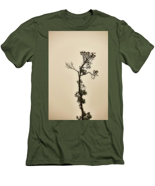 Tree In The Mist Men's T-Shirt (Athletic Fit)