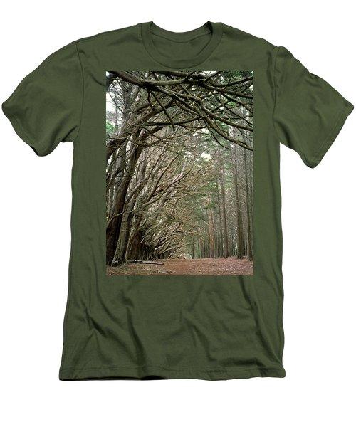 Tree Lane Men's T-Shirt (Athletic Fit)