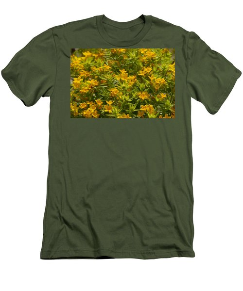 True Gold Men's T-Shirt (Slim Fit) by Tim Good
