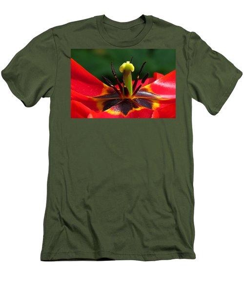 Tulip Stamen Men's T-Shirt (Slim Fit) by John Topman