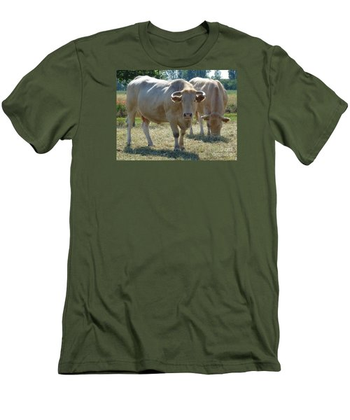 Men's T-Shirt (Slim Fit) featuring the photograph Two Cows by Jean Bernard Roussilhe