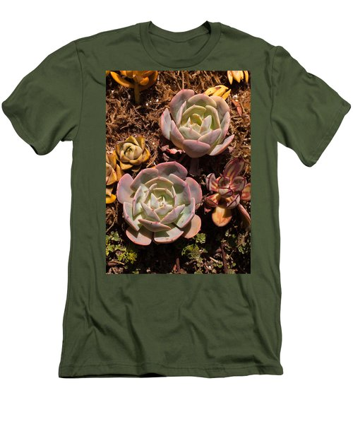 Men's T-Shirt (Slim Fit) featuring the photograph Two Succulents  by Catherine Lau