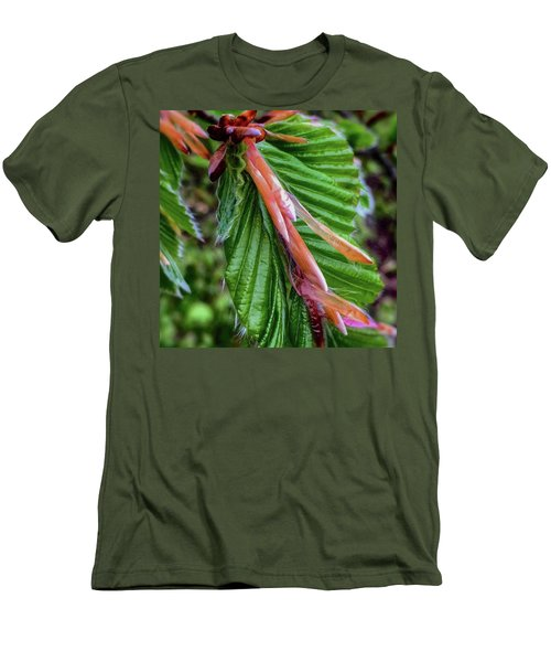 Beech  Men's T-Shirt (Slim Fit) by Majse Tange