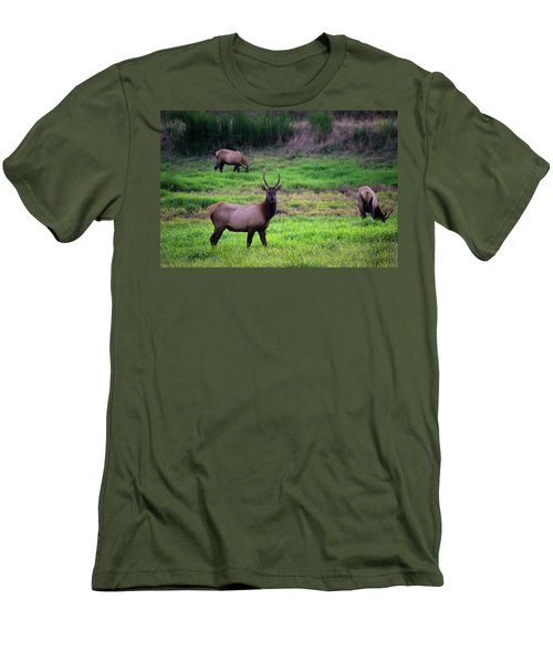 Vigilant Men's T-Shirt (Athletic Fit)