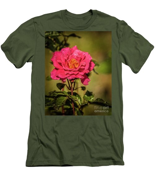 Vignetted  Rose Men's T-Shirt (Slim Fit) by Robert Bales