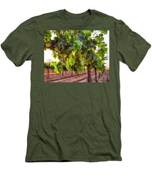 Vineyard 3 Men's T-Shirt (Athletic Fit)