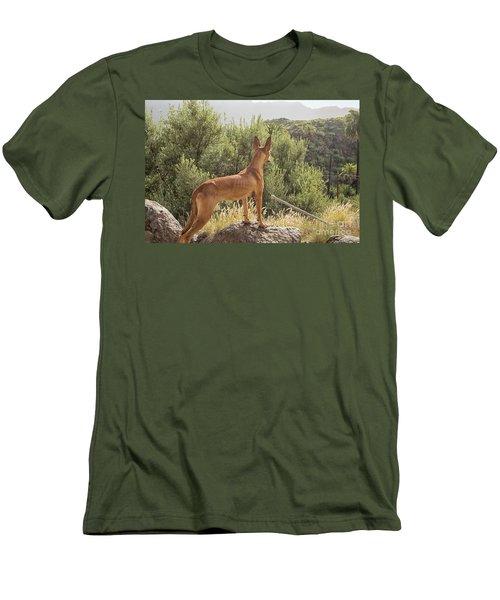 Watchful Dog Men's T-Shirt (Slim Fit) by Patricia Hofmeester
