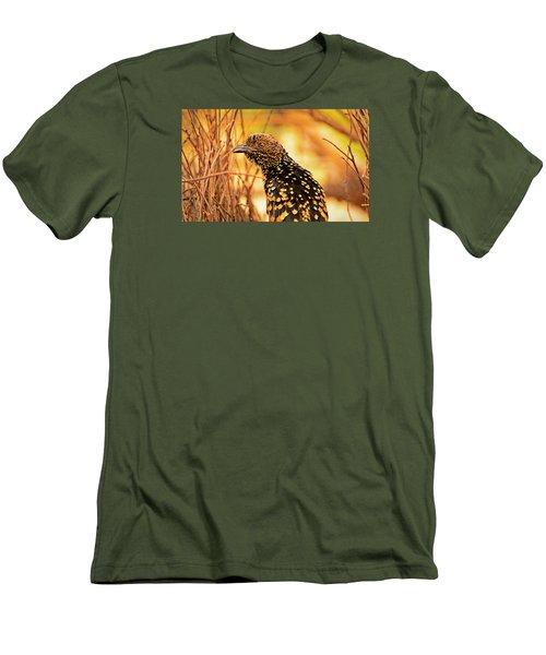 Western Bowerbird Men's T-Shirt (Slim Fit) by Racheal  Christian