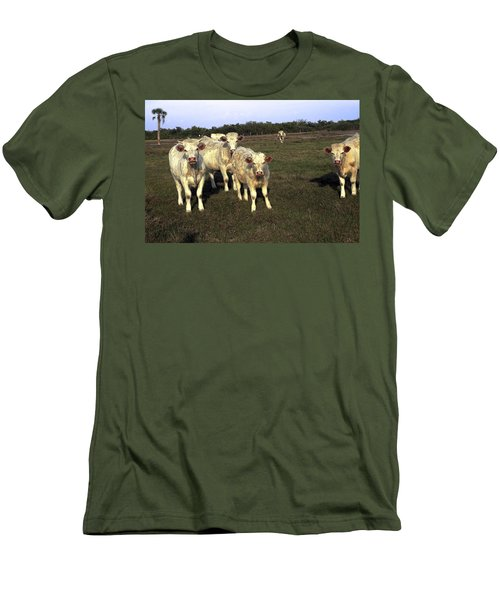 Men's T-Shirt (Slim Fit) featuring the photograph White Cows by Sally Weigand