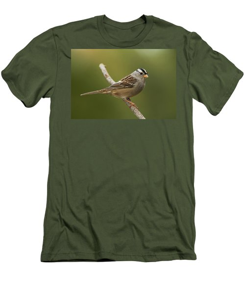 Men's T-Shirt (Slim Fit) featuring the photograph White-crowned Sparrow by Doug Herr