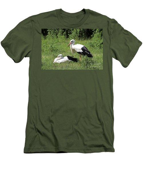 White Storks Men's T-Shirt (Athletic Fit)