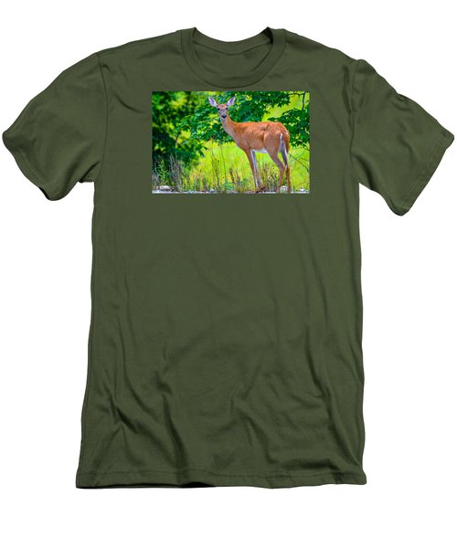 Men's T-Shirt (Slim Fit) featuring the photograph White-tailed Deer 2 by Brian Stevens