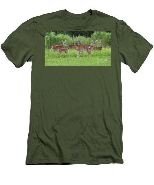 Whitetail Deer Gathering Men's T-Shirt (Slim Fit) by Myrna Bradshaw