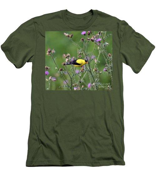 Wild Birds - American Goldfinch Male Men's T-Shirt (Slim Fit) by Kerri Farley