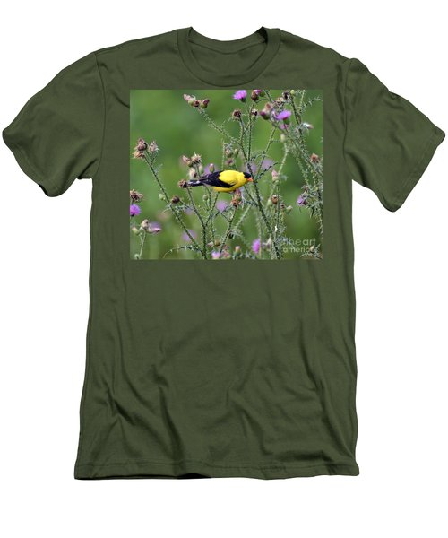 Wild Birds - American Goldfinch Male Men's T-Shirt (Athletic Fit)