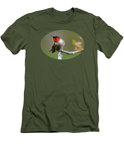 Wild Birds - Ruby-throated Hummingbird Men's T-Shirt (Slim Fit) by Christina Rollo