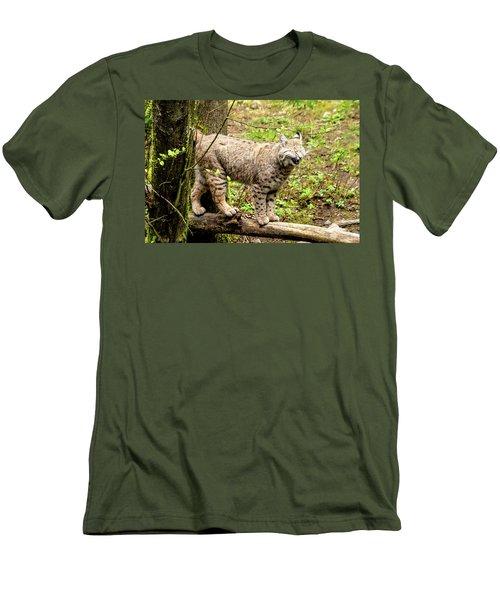 Wild Bobcat In Mountain Setting Men's T-Shirt (Slim Fit) by Teri Virbickis