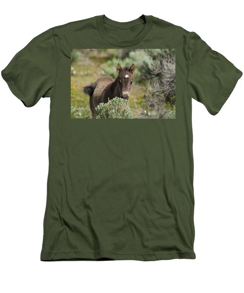 Wild Mustang Foal Men's T-Shirt (Athletic Fit)