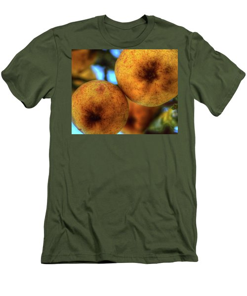 Winter Apples 2 Men's T-Shirt (Slim Fit) by Jerry Sodorff