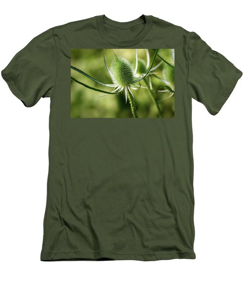 Wonderful Teasel - Men's T-Shirt (Athletic Fit)