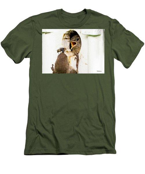 Wren Breakfast Men's T-Shirt (Athletic Fit)