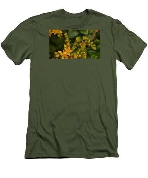 Yellow Sedum Men's T-Shirt (Athletic Fit)