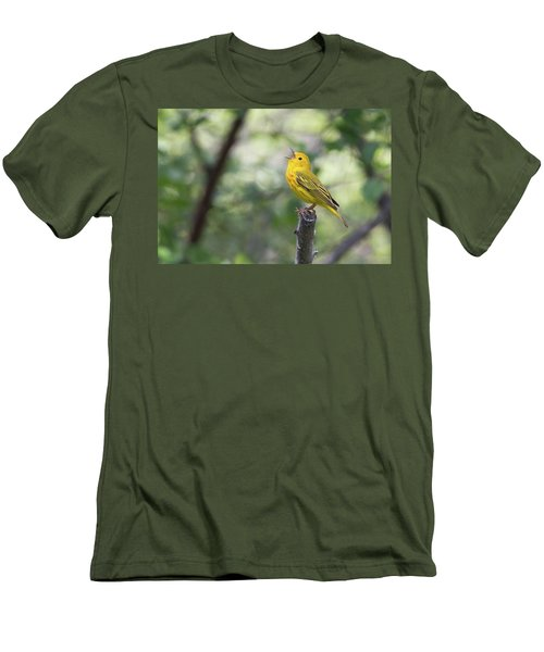 Yellow Warbler In Song Men's T-Shirt (Athletic Fit)