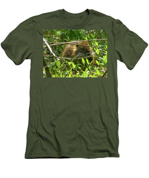 Young Nutria In Love Men's T-Shirt (Slim Fit) by Kimo Fernandez