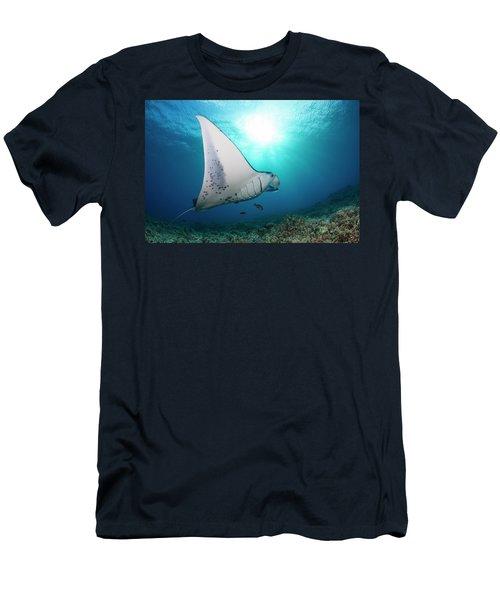 A Reef Manta Ray  Manta Alfredi Men's T-Shirt (Athletic Fit)