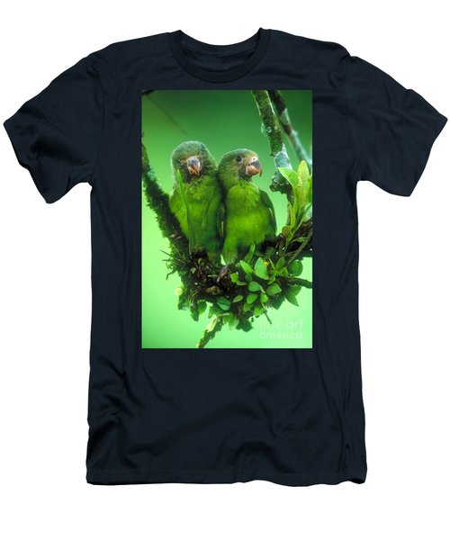 Cobalt-winged Parakeets Men's T-Shirt (Athletic Fit)