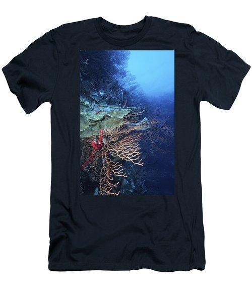 A Peaceful Place Men's T-Shirt (Athletic Fit)