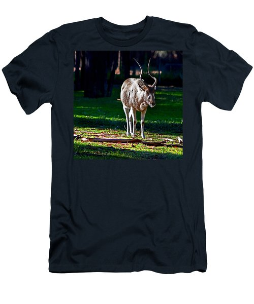 Addax Men's T-Shirt (Athletic Fit)