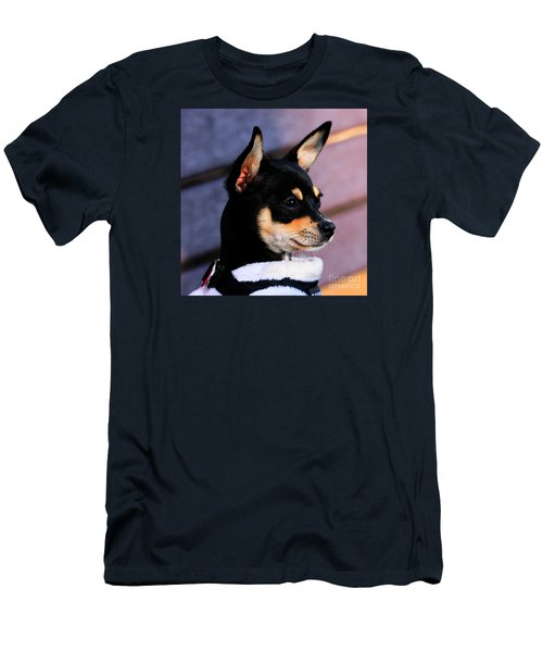 Agie - Chihuahua Pitbull Men's T-Shirt (Athletic Fit)