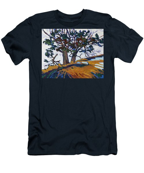 Ancient Red Cedars Men's T-Shirt (Athletic Fit)