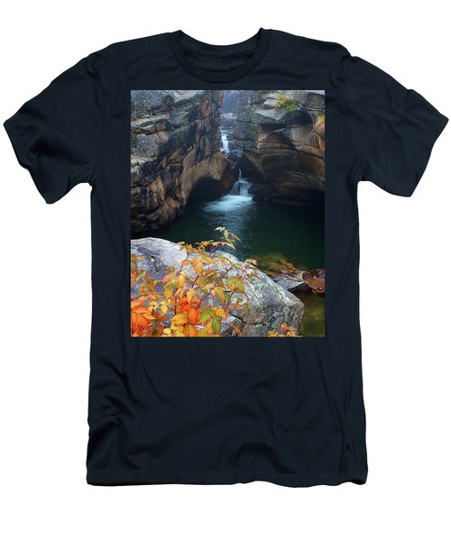 Autumn At The Grotto Men's T-Shirt (Athletic Fit)