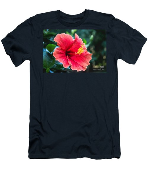 Bold And Beautiful Men's T-Shirt (Athletic Fit)
