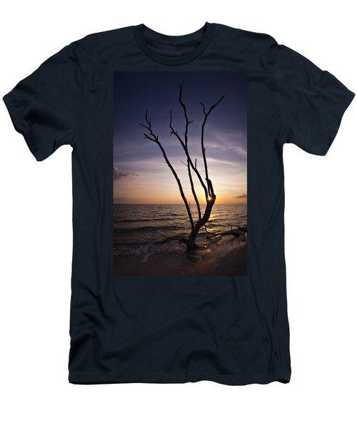 Bonita Beach Tree Men's T-Shirt (Slim Fit) by Bradley R Youngberg