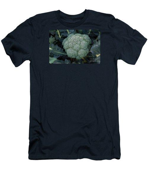 Broccoli Men's T-Shirt (Slim Fit) by Robert Bales