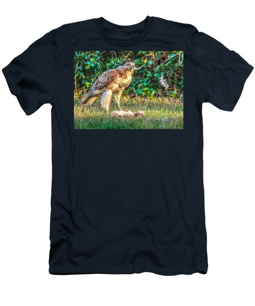 Buteo Jamaicensis Men's T-Shirt (Athletic Fit)