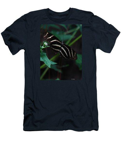 Butterfly Art 2 Men's T-Shirt (Slim Fit) by Greg Patzer