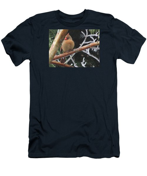 Men's T-Shirt (Slim Fit) featuring the photograph Cardinal by Marilyn Zalatan