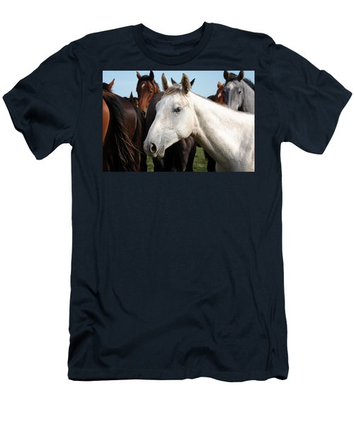Close-up Herd Of Horses. Men's T-Shirt (Athletic Fit)
