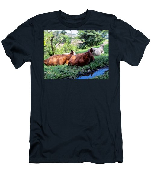Men's T-Shirt (Slim Fit) featuring the photograph Cow 6 by Dawn Eshelman
