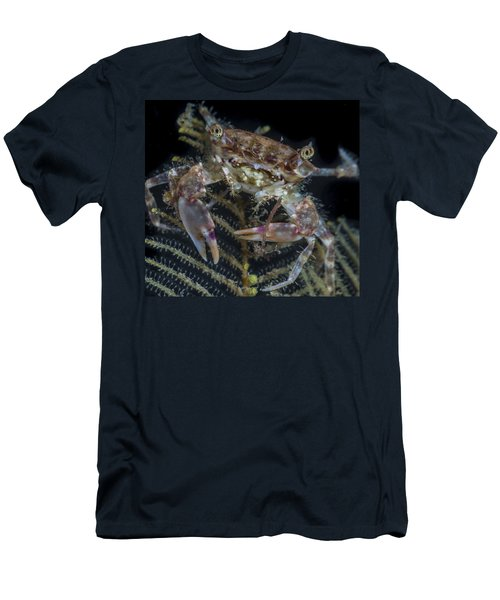 Crab Staring At You Men's T-Shirt (Athletic Fit)
