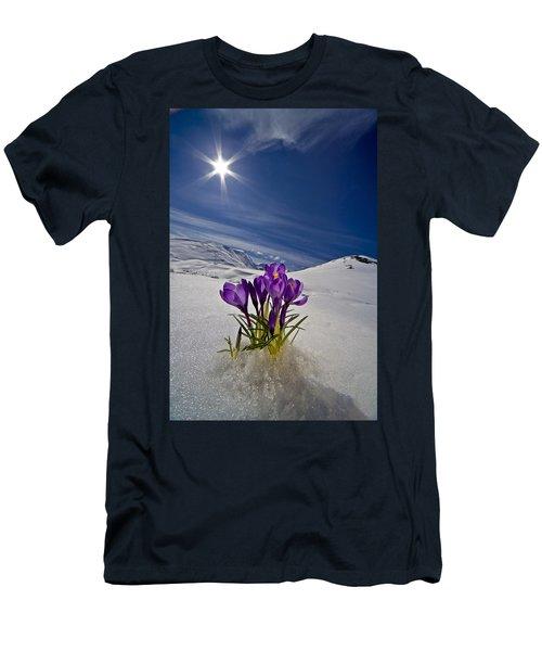 Crocus Flower Peeking Men's T-Shirt (Athletic Fit)